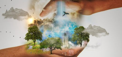 CSR Corporate responsibility initiativer
